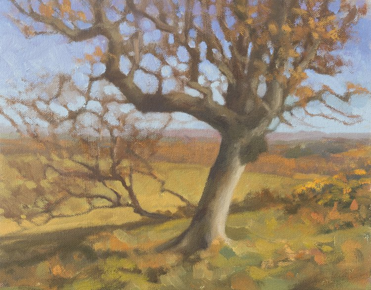 Oil Study of Birch Tree, outdoor oil painting