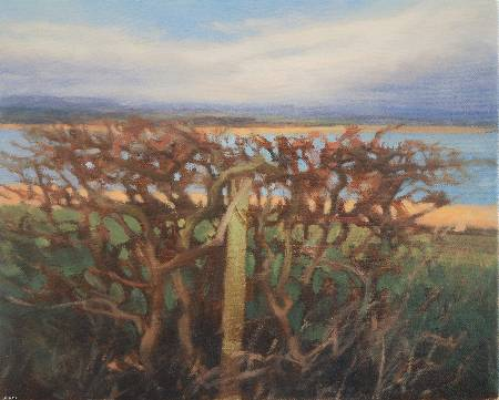Landscape painting of hedge -   Hedge Newburgh
